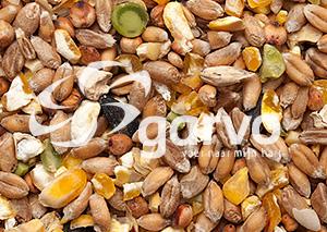 4133 Körnermischfutter ohne Gerste