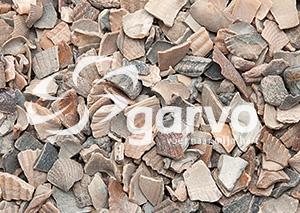3342 Muschelgrit 4 (grob)